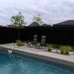 Modern Low Maintenance Landscaping with Pool 014