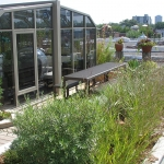 Rooftop Garden Outremont 03