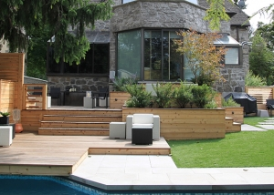 Urban Backyard Patio & Terrace 1