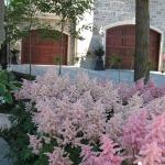 Modern Home Garden Solution 11
