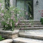 Modern Home Garden Solution 13
