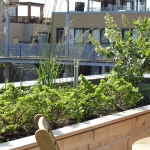 Rooftop Garden Outdoor Living 10