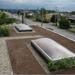 Rooftop Gardening 02
